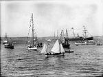 A regatta, Neutral Bay (2609367077).jpg