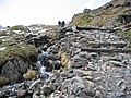 A walk up the Pyg track - a step and a bridge - geograph.org.uk - 772425.jpg