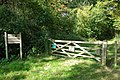 A way into Glovers Wood - geograph.org.uk - 1608647.jpg