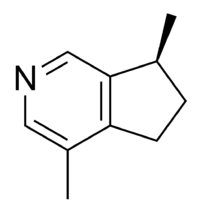 Actinidine chemical structure.png