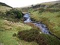 Afon Llechach at Tomen Llechach - geograph.org.uk - 1086359.jpg