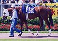Agnes Digital 20010603P1.jpg