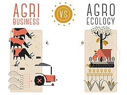 Agribusiness vs agroecology.jpg