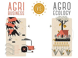 Agroecology The study of ecological processes in agriculture