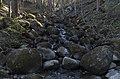 Akmeņupītes ūdenskritums, 14.05.2017.jpg