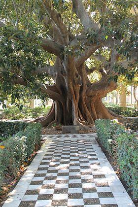 Alameda apodaca wikipedia la enciclopedia libre for Jardin umbrio valle inclan