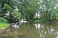 Allegheny River - panoramio (15).jpg