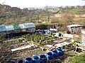 Allotments next to the canal, Bingley - geograph.org.uk - 387336.jpg