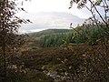 Allt Lochan nan Geadas - geograph.org.uk - 229180.jpg