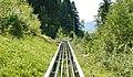 Alpsee Coaster - Rodelbahn - panoramio (1).jpg