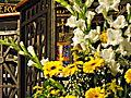 Altar Blumenschmuck Herz Jesu.JPG