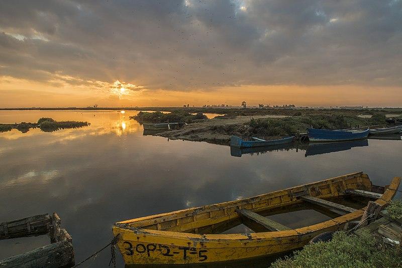 File:Amanecer en la Bahía del Fangar.jpg