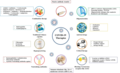 An overview of COVID-19 therapeutics and drugs.webp