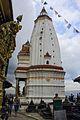 Anantapur swoyambu shirshak baniya.jpg