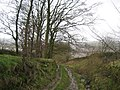 Ancient Track leading down to Skipton - geograph.org.uk - 308093.jpg