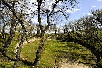 Marche - Roman Amphitheatre in the Archaeological Park of Urbs Salvia