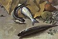 Antonio Sicurezza still life with fishes.jpg