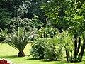 Antwerp Zoo (12210529615).jpg