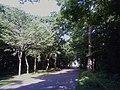Aoba Park 20110827.jpg