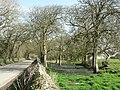 Approaching Somerset farm near St Donats. - geograph.org.uk - 1207349.jpg