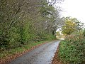 Approaching Wolferd Green on Grub Street - geograph.org.uk - 1566051.jpg