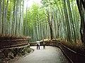 Arashiyama - panoramio.jpg