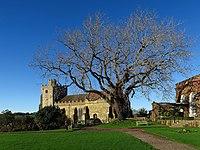 Ashburnham, St Peter's Church.jpg