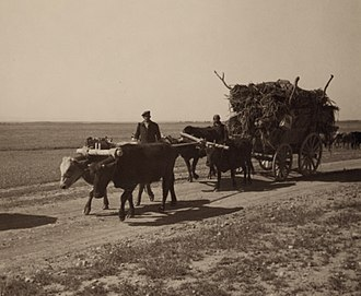 Simele massacre - Assyrian refugees on a wagon moving to a newly constructed village on the Khabur River in Syria
