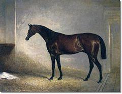 1843 Grand National