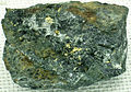 Auriferous greenschist (Homestake Formation, Precambrian; Homestake Mine, Lead, Black Hills, South Dakota, USA) 2 (17054879289).jpg