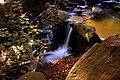 Autumn Flow (73282237).jpeg