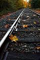 Autumn Rails, John Lingerfelt (6501973969).jpg