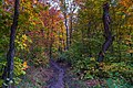 Autumn on the Oberg Mountain Hiking Trail Loop, Minnesota (36723570944).jpg