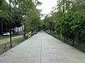 Av. Mazatlán - panoramio.jpg