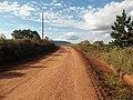 Avenida Vista Alegre - Palma - Santa Maria, foto 27 (sentido N-S).jpg - panoramio (1).jpg