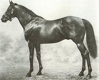 Ayrshire (horse) British-bred Thoroughbred racehorse