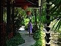 Bávaro, 23000, Dominican Republic - panoramio.jpg