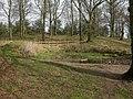 Badbury Rings, pond - geograph.org.uk - 1205247.jpg