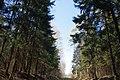 Balashikha, Moscow Oblast, Russia - panoramio (87).jpg