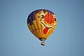Ballonvaart-DSC 0133.jpg