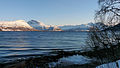 Balsfjorden coast 3.JPG