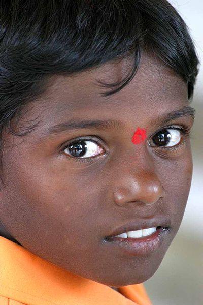 File:Bangalore, India (816521903).jpg