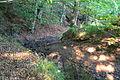 Barntrup - 2015-08-13 - LIP-071 Tal der Exter (18).jpg