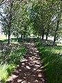 Baylands Park - panoramio.jpg