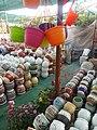 Beautiful Flower Pot's in Pune.jpg
