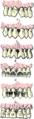 Beautiful teeth.png