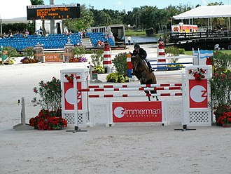 Wellington, Florida - Beezie Madden and Onlight, Grand Prix competition at the FTI Winter Equestrian Festival, Wellington, Florida.