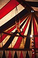 Being in Circus (42417378345).jpg