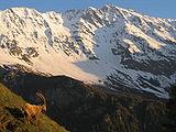 Clima alpino in Savoie (observe um íbex à esquerda).