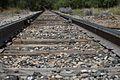 Belly on the Railroad Tracks (15124489932).jpg